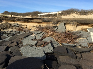 Parking lot erosion @ Herring Cove North