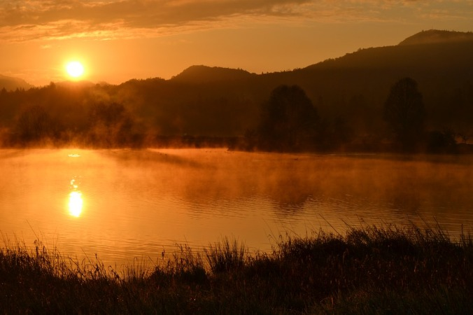 morning fog over a pond